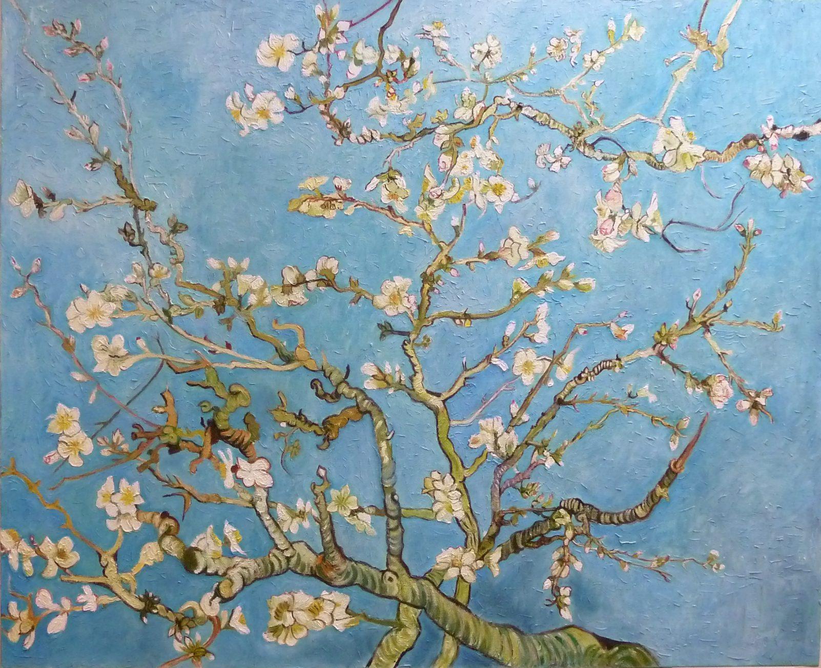 Copie de tableau | Amandier en fleur d'après Vincent Van Gogh par Alexandra Astorquiza